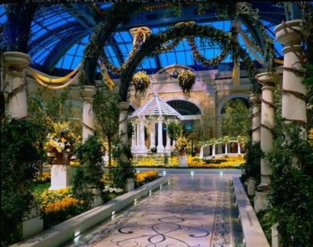 Bellagio Conservatory Yellow Flowers | Suites at Bellagio