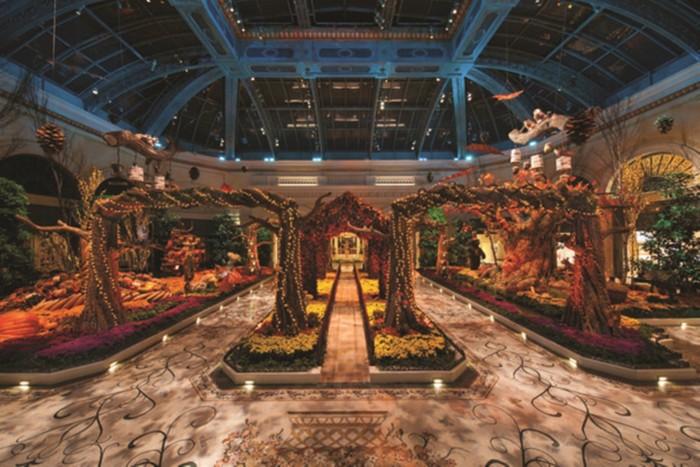 Conservatory Botanical Garden | Suites at Bellagio