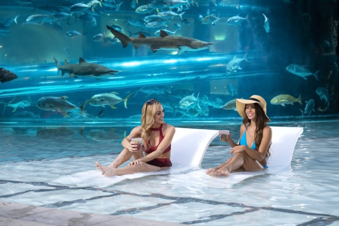 Golden Nugget Tank Pool | Suites at Golden Nugget Las Vegas Hotel & Casino