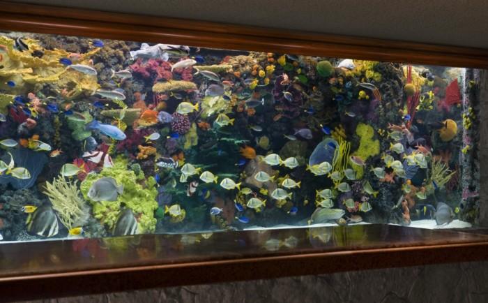Lobby Aquarium | Suites at Mirage Resort & Casino